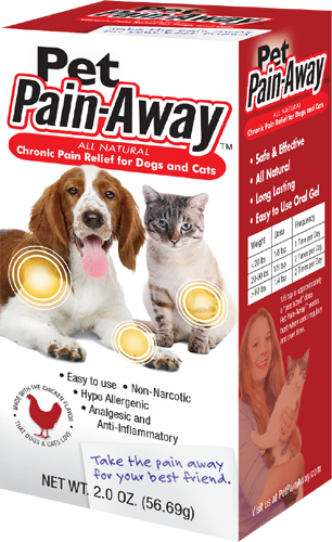 Pain Relief for your Dog or Cat